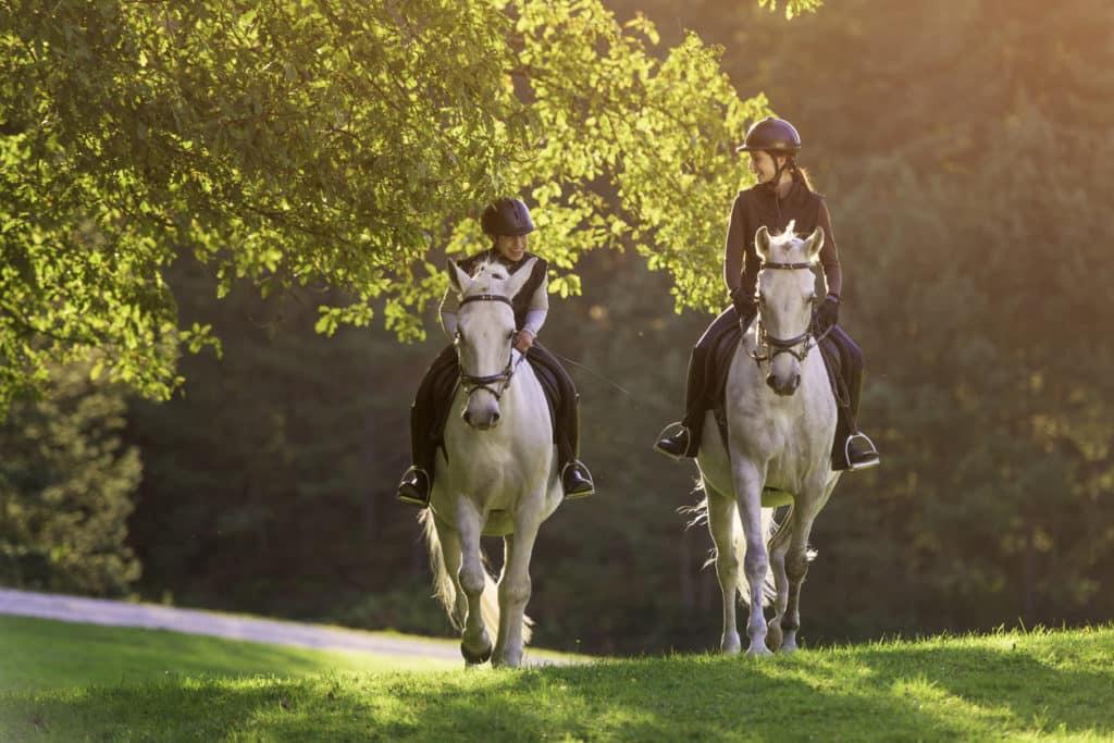 Horse Riding 10 Valuable Tips For Beginners Manegearnhem